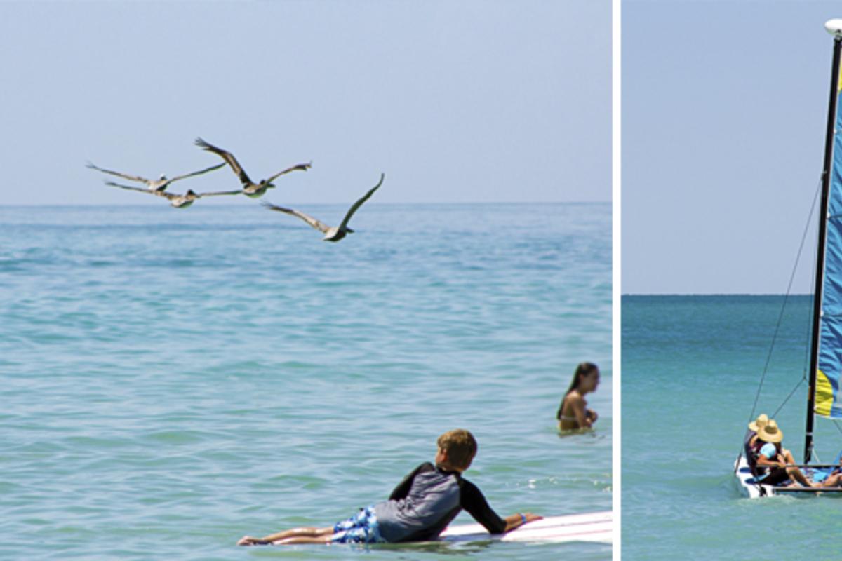 Sailing And Surfing Vero Beach