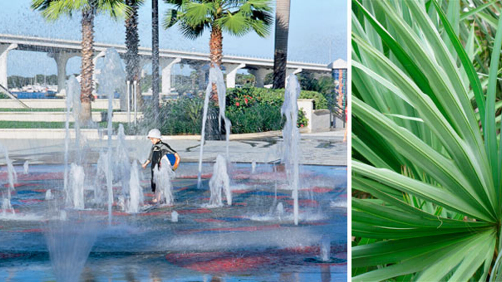 The Fountains Of Vero Beach